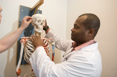 Student doctors studying anatomy on a skeleton