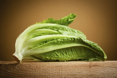 Organic romain lettuce isolated
