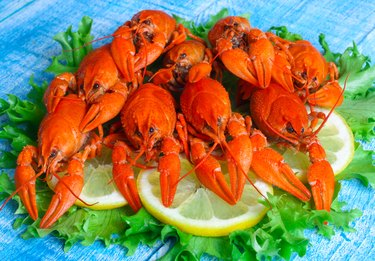 food boiled crayfish