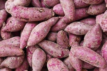 Purple Sweet Potato