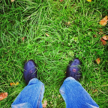 Foot on the field.