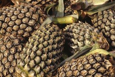 Pineapples, Kuala Lumpur, Malaysia, full frame, (Close-up)