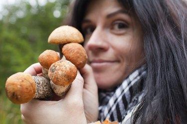 Mushrooms in hands