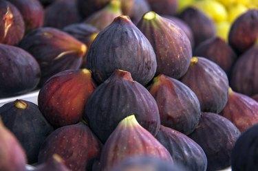 Fig, Fig Tree, Fruit, Purple, Freshness
