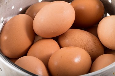 eggs in bucket