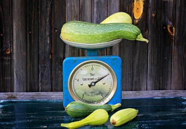 vintage scales courgettes on dark wooden background rustic farm products