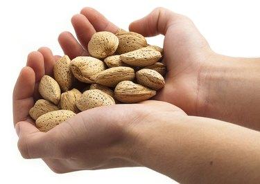 Hnadful of almonds