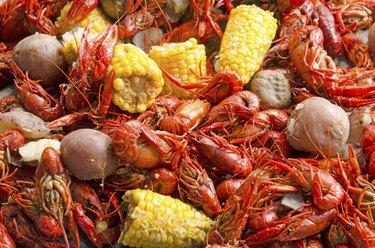Crawfish Feed