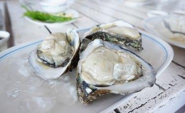 Fresh oyster on white plates