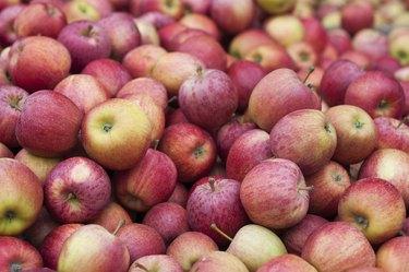 Hundreds of apples