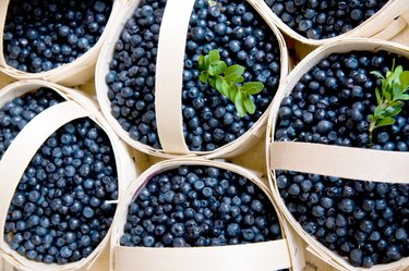 Blaubeeren im Korb blueberries in a basket