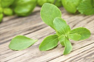 Stevia herbs sweetener