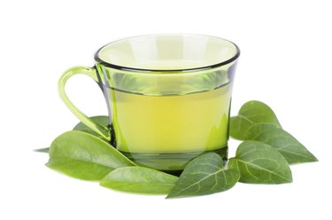 glass cup with fresh green tea leaves