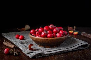 Hawthorn berries, still life