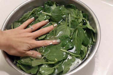 hand submersing spinach in bowl of water to wash leaves
