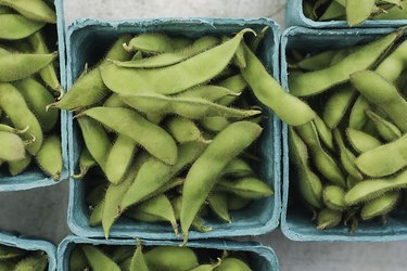 soy foods soybeans edamame