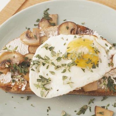 mushroom-ricotta toast with a fried egg