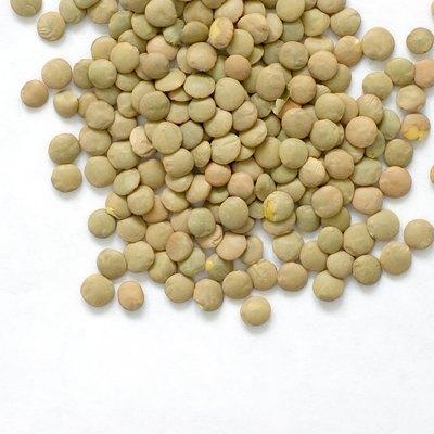 Green Lentils on White
