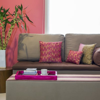 Modern living room with sofa and vase of Lucky bamboo