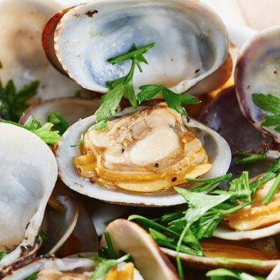 Clams steamed