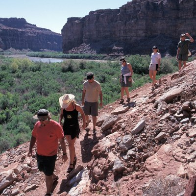 Trail of Hikers on Rocky Slope in Canyon