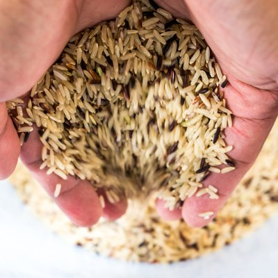 Hand holding raw brown rice