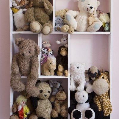 Stuffed animals on shelves