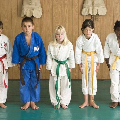 Martial arts students bowing