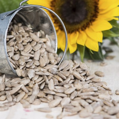 Some Sunflower Seeds
