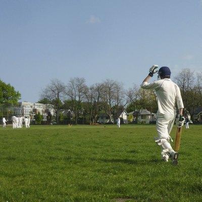 Cricket Batsman Heading Out to Bat