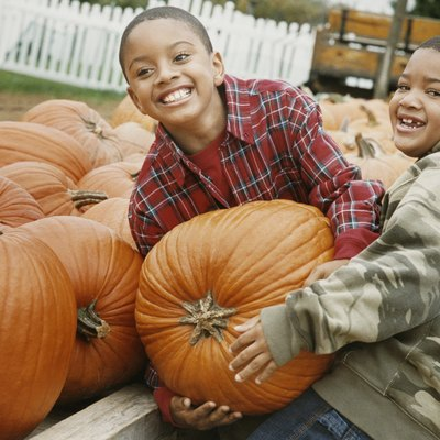 Two Boys Carry a Heavy Pumpkin Together