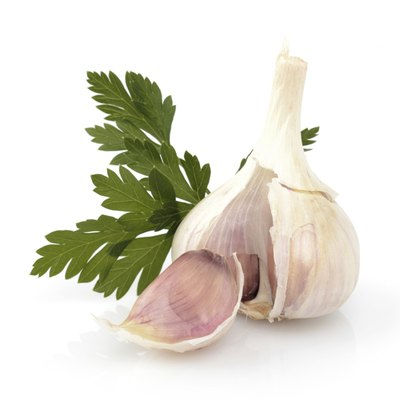 Garlic with parsley leaf isolated on white