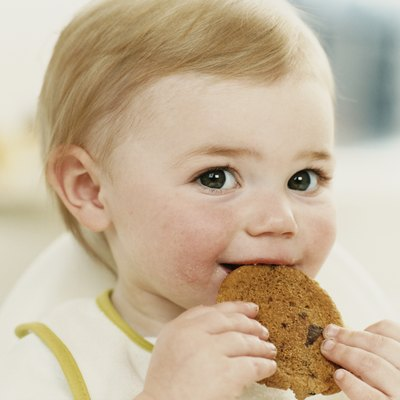 Close Up of a Baby Boy Eating a Cookie