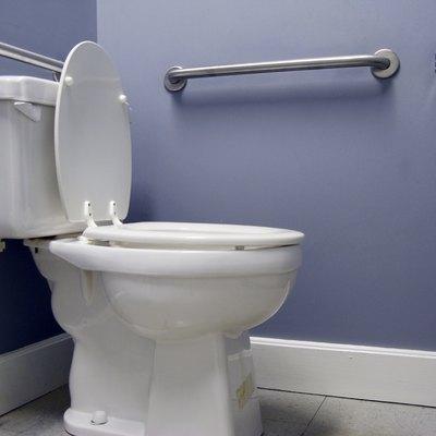 Handicap enabled toilet