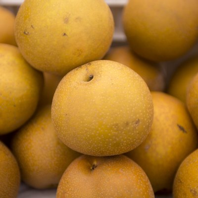 Asian Pear Background