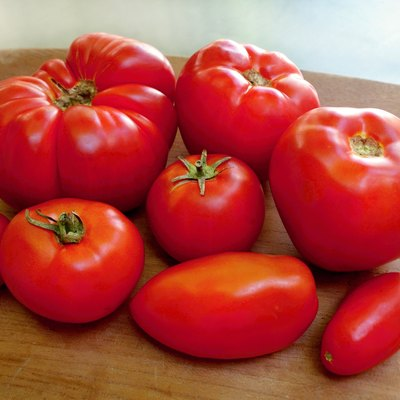 Homegrown organic tomatoes