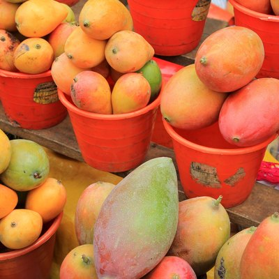 Ripe mangoes for sale in a Mexican farmers market