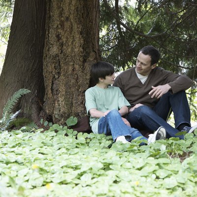 Father and son sitting by a tree talking