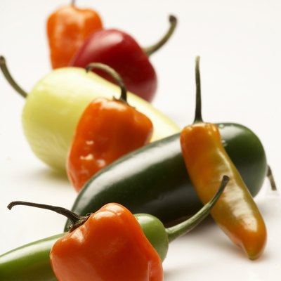 Close-up of chili peppers