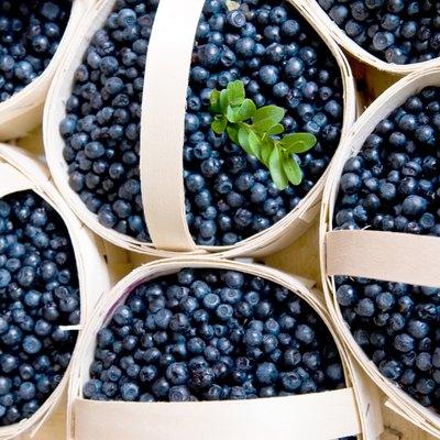 Blaubeeren im Korb blueberries in a basket