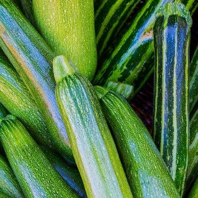 Fresh zucchini at a farmer's market