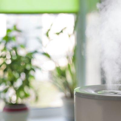 Humidifier spreading steam