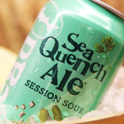 Dogfish Head Sea Quench Ale