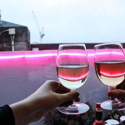 Two people toast with wine glasses.