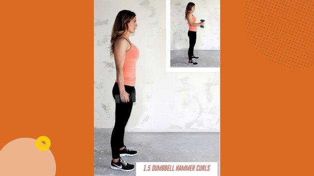 Move 2: 1.5 Dumbbell Hammer Curls