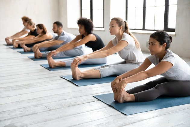 Diverse people sitting in paschimottanasana pose in row, practicing yoga