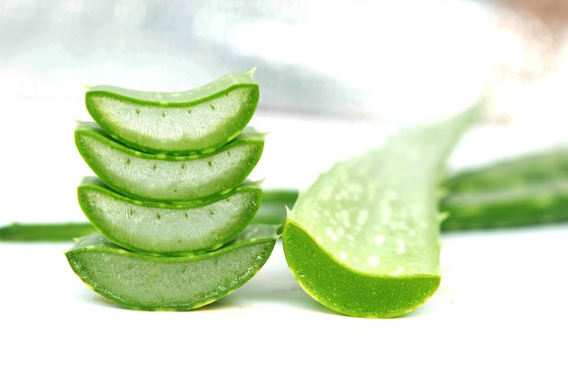 Sliced off pieces of aloe vera
