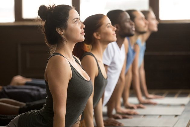 Group of sporty people in upward facing dog exercise