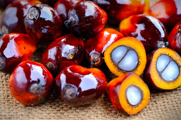 Close up of fresh oil palm fruits, selective focus.
