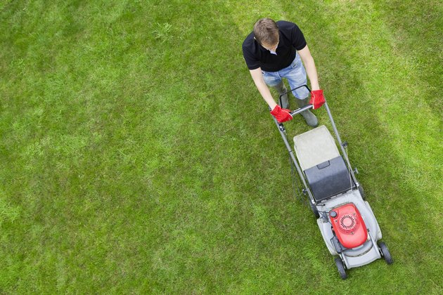 Aerial view of man on green lawn with push mower